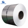 Stainless Steel Coil/Sheet/Plate/Strip